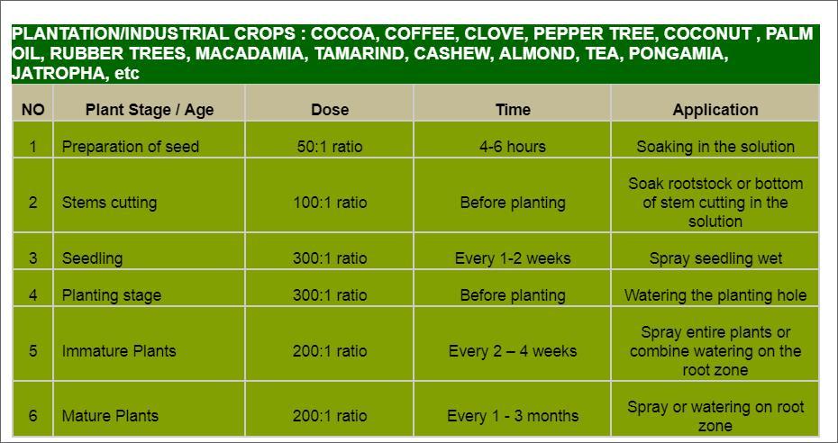 Offer    Aloe Vera Organic Fertilizer Liquid Concentrate  Cocoa10