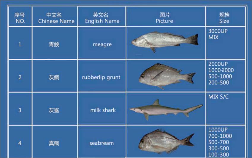 Offer FISH   F_00110