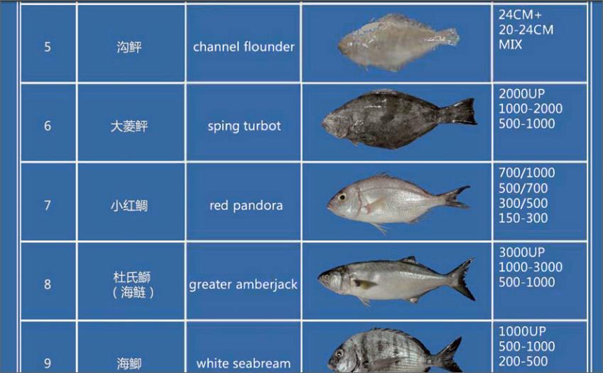Offer FISH   F_00210