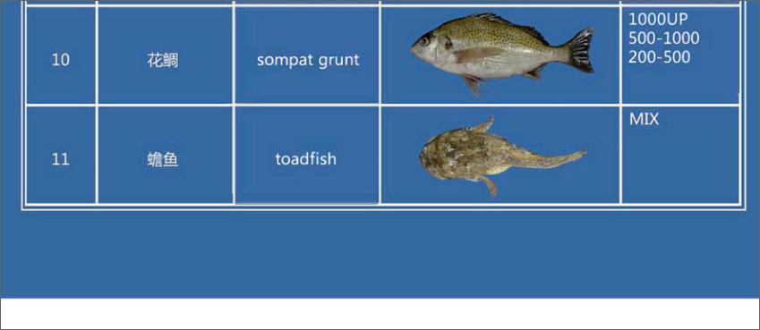 Offer FISH   F_00310