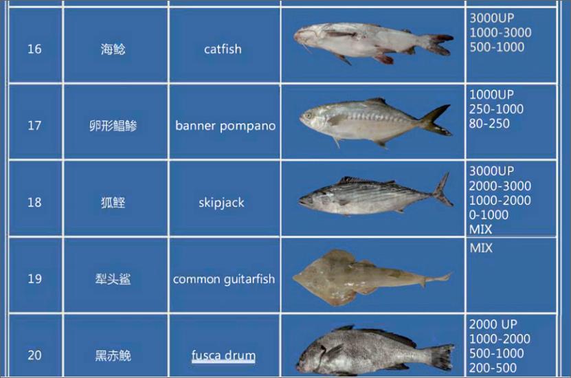 Offer FISH   F_02010
