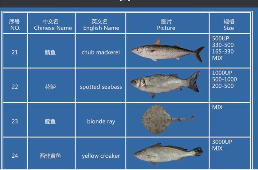 Offer FISH   F_02410