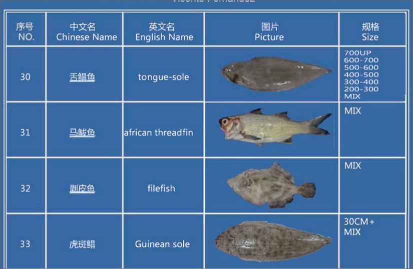 Offer FISH   F_03310