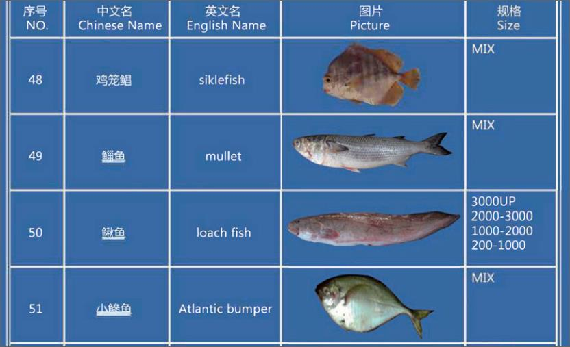 Offer FISH   F_05110