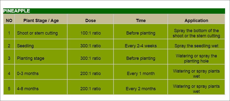 Offer    Aloe Vera Organic Fertilizer Liquid Concentrate  Pineap10