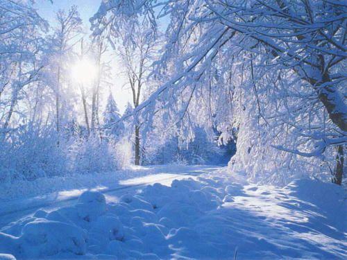 Belles images paysages hivernal  0443a110