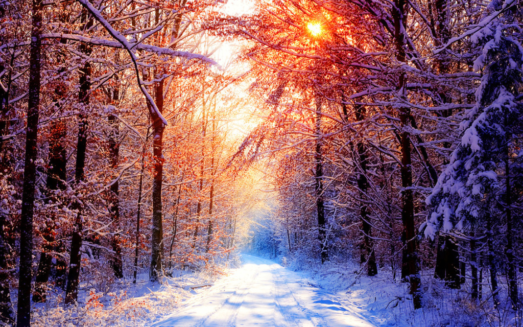 Belles images paysages hivernal  - Page 2 20111211