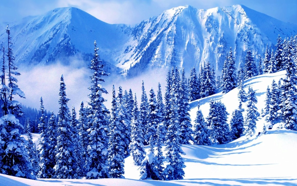 Belles images paysages hivernal  - Page 2 20111215