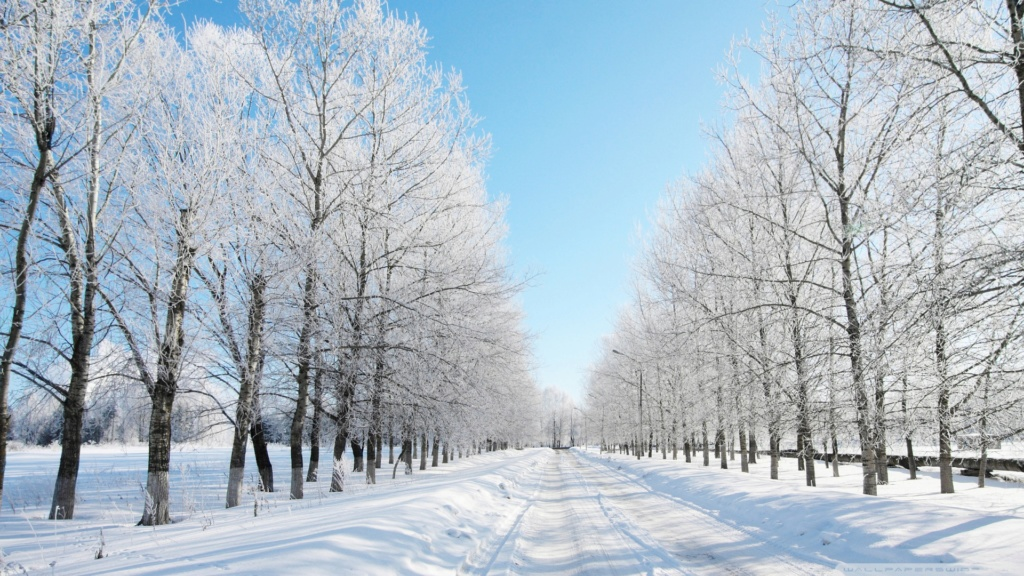 Belles images paysages hivernal  - Page 2 20130111