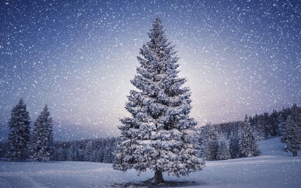 Belles images paysages hivernal  8906_l10