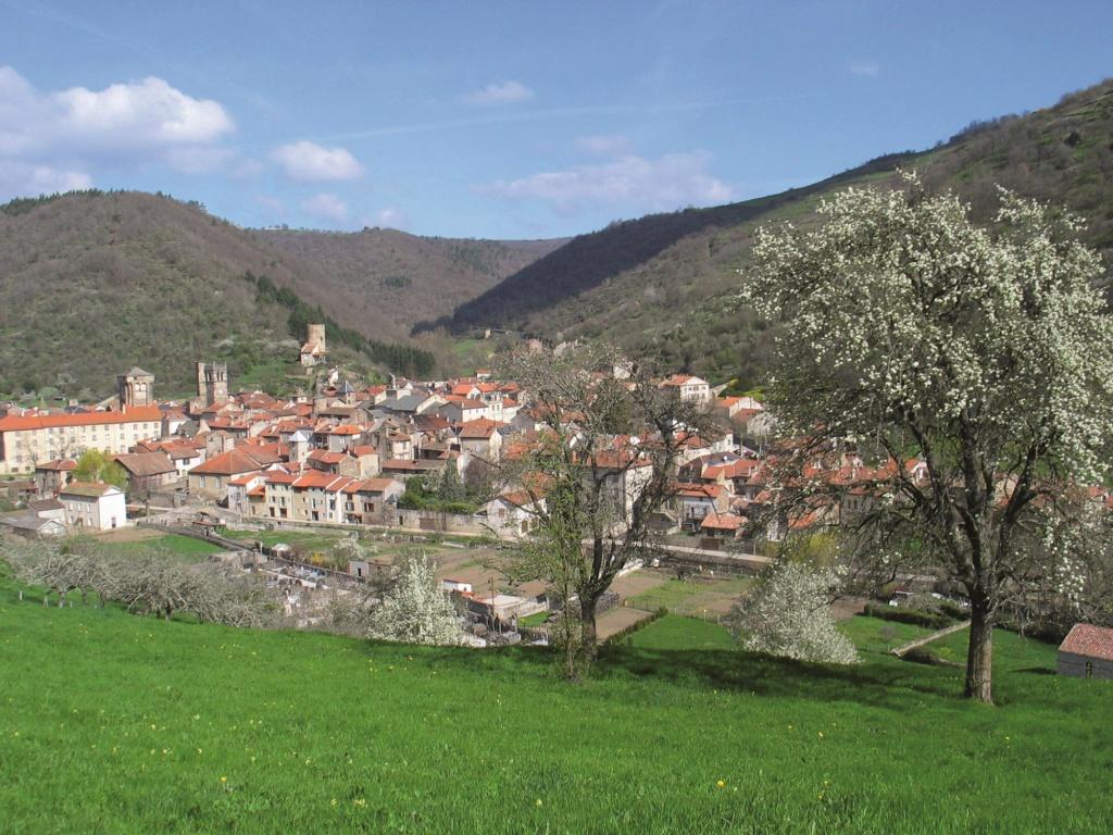 Les plus beaux villages de France  Blesle10