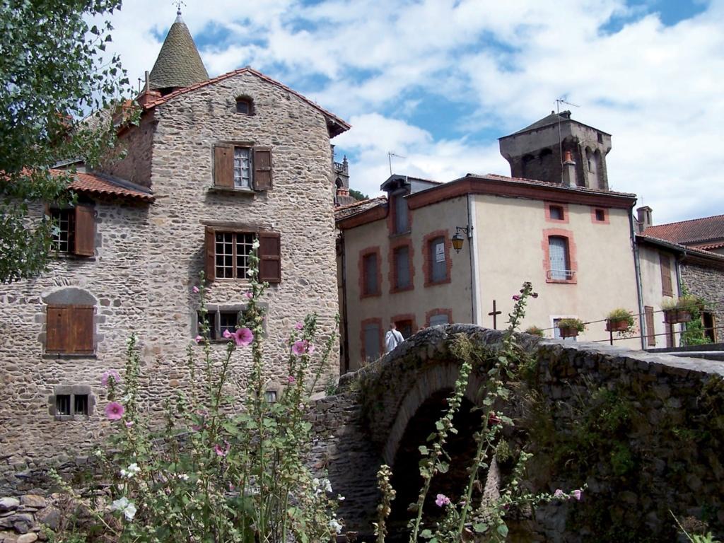 Les plus beaux villages de France  Blesle11