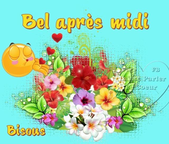 Jeudi 24 Janvier 2019 Bon-ap15