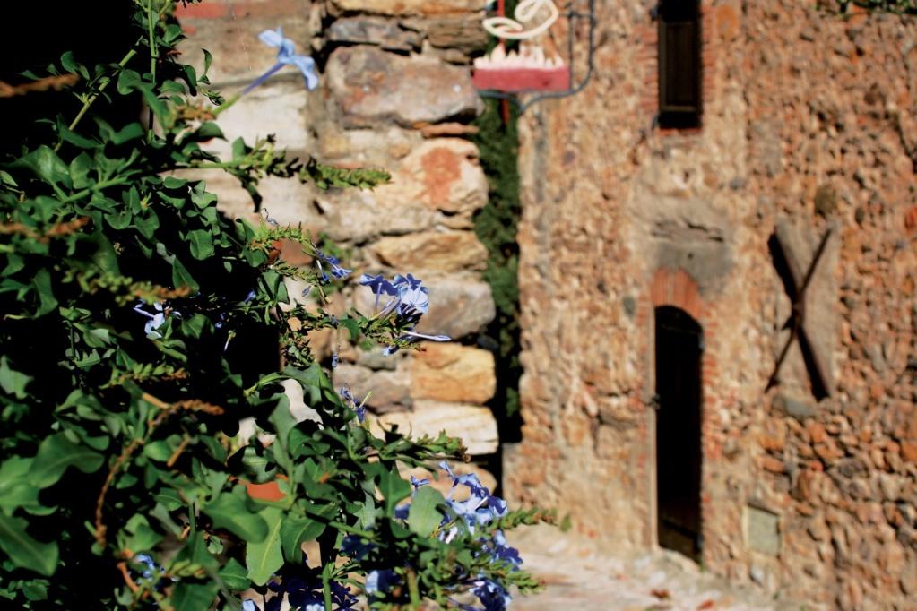 Les plus beaux villages de France  - Page 2 Castel21