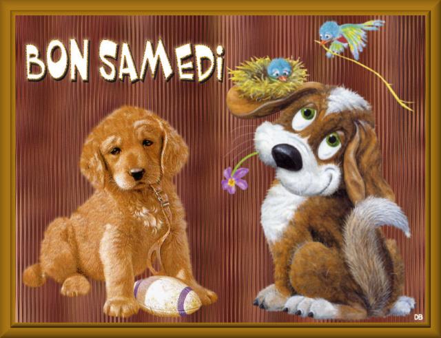 SAMEDI 17 DECEMBRE  Eec3db10