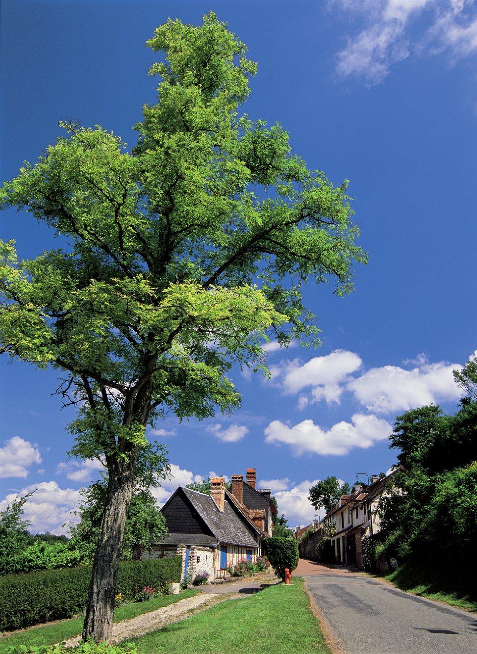 Les plus beaux villages de France  - Page 3 Gerber15