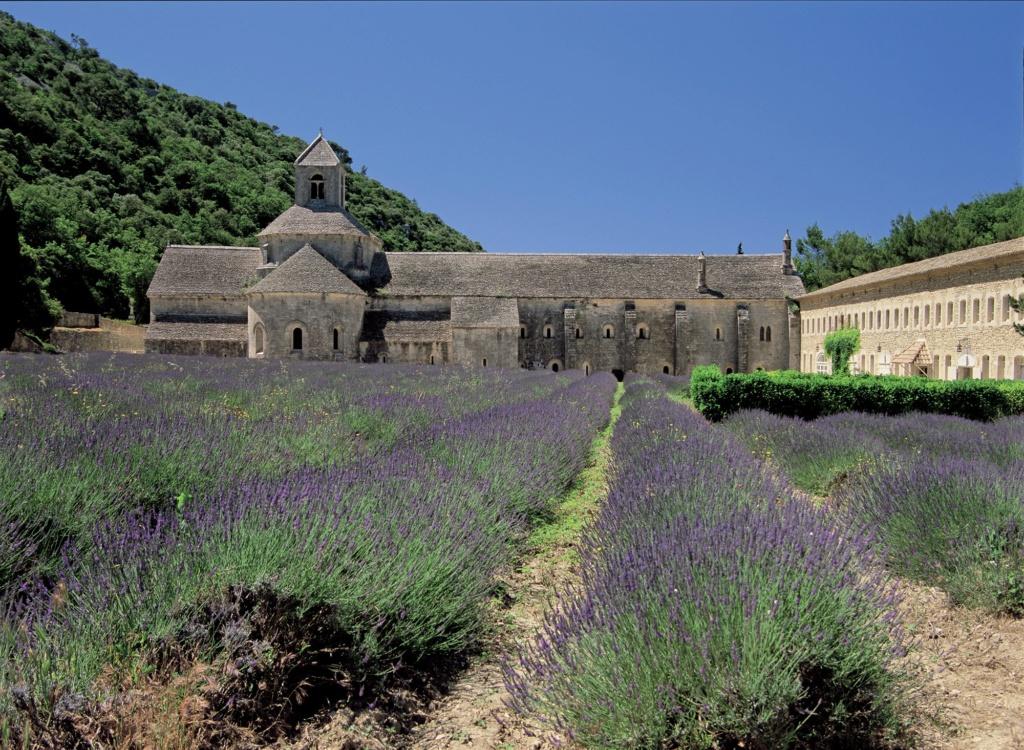 Les plus beaux villages de France  - Page 3 Gordes10
