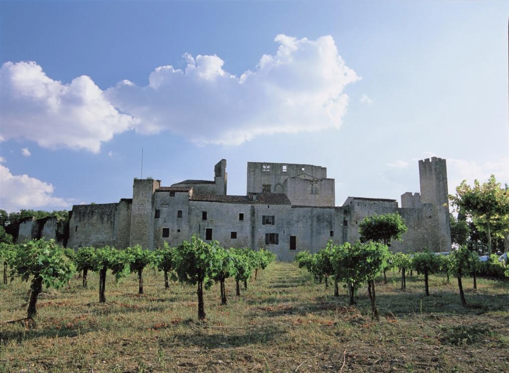 Les plus beaux villages de France  - Page 4 Larres13