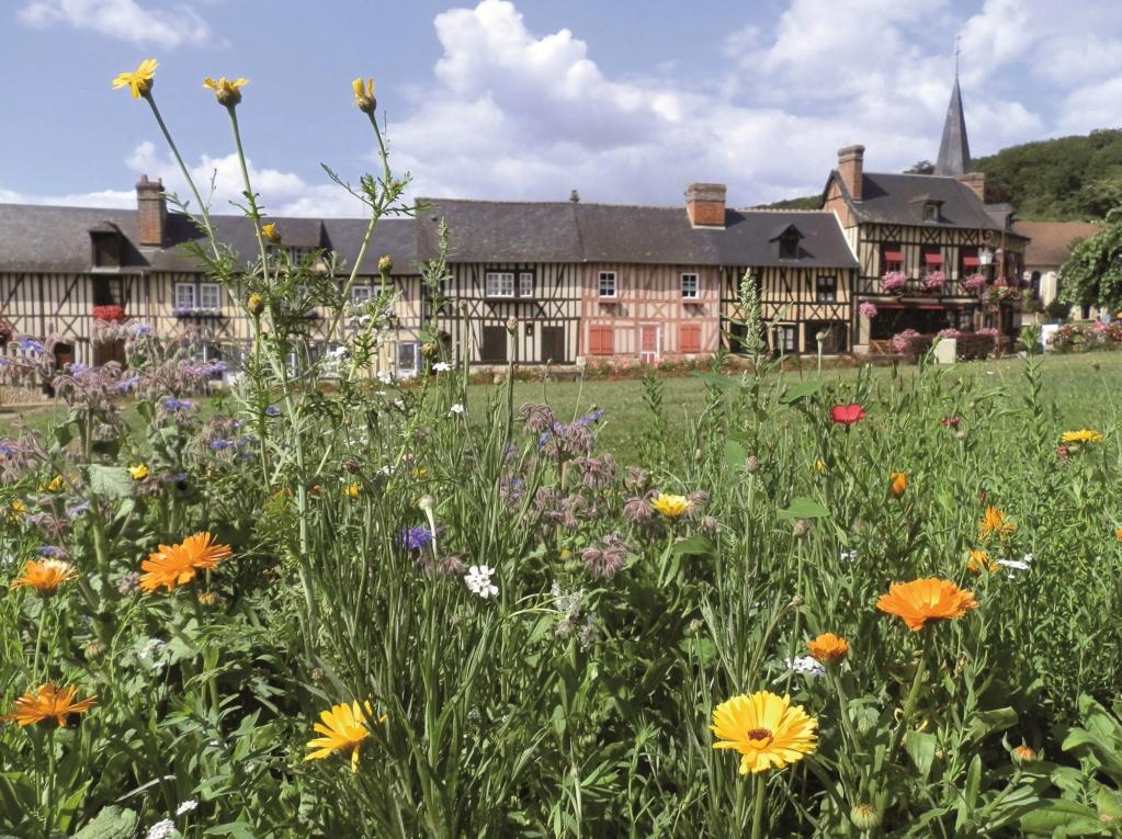 Les plus beaux villages de France  - Page 4 Le-bec13