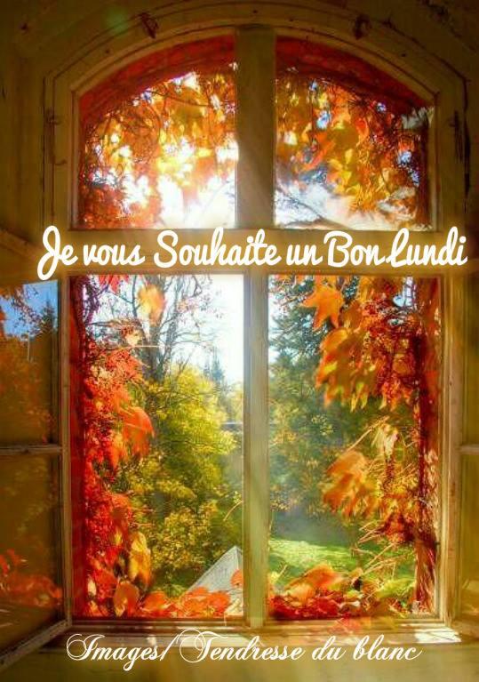 dimanche 19 novembre Lundi_11