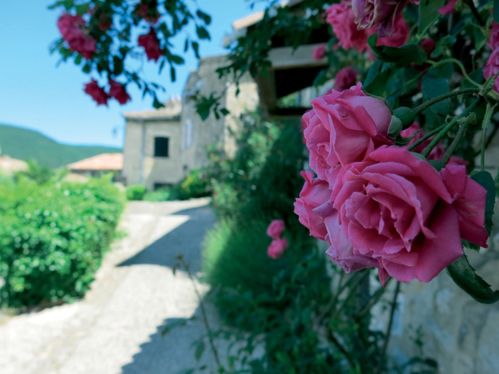 Les plus beaux villages de France  - Page 4 Mirman11
