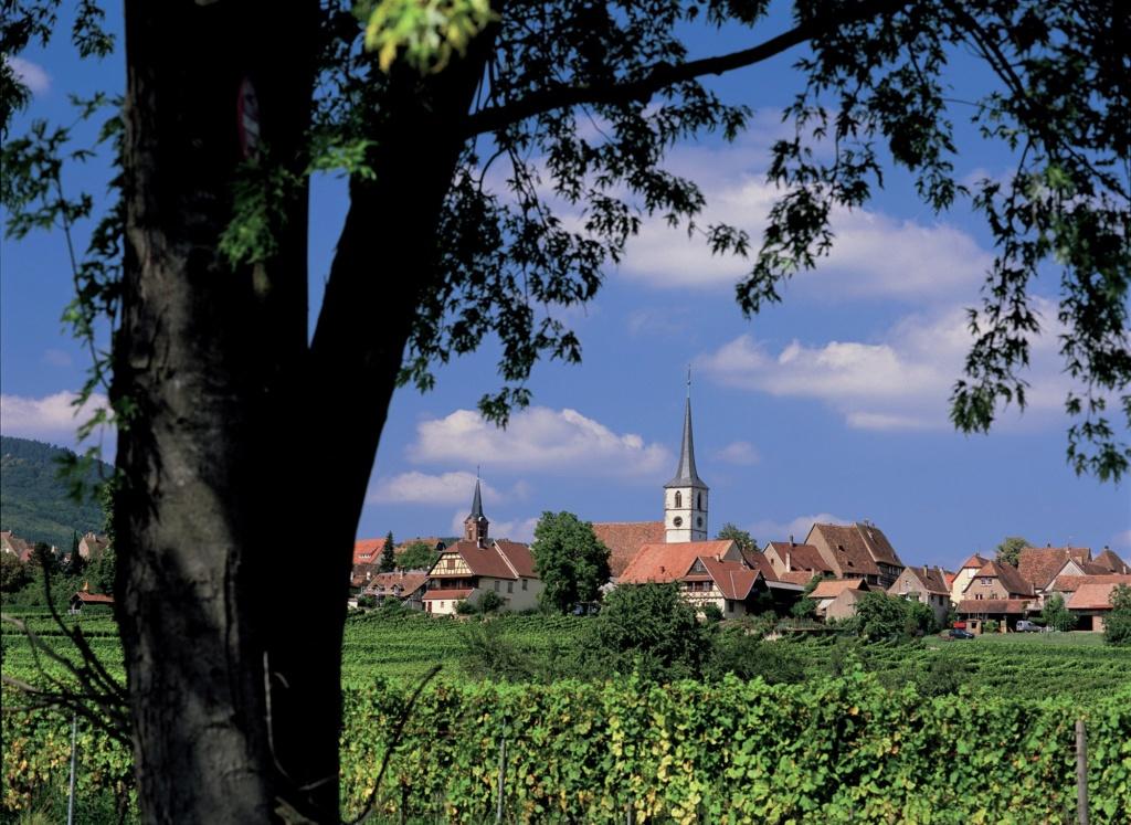 Les plus beaux villages de France  - Page 4 Mittel13