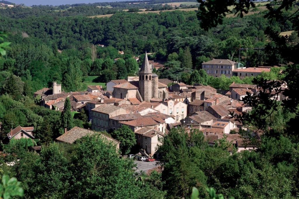 Les plus beaux villages de France  - Page 4 Monest12