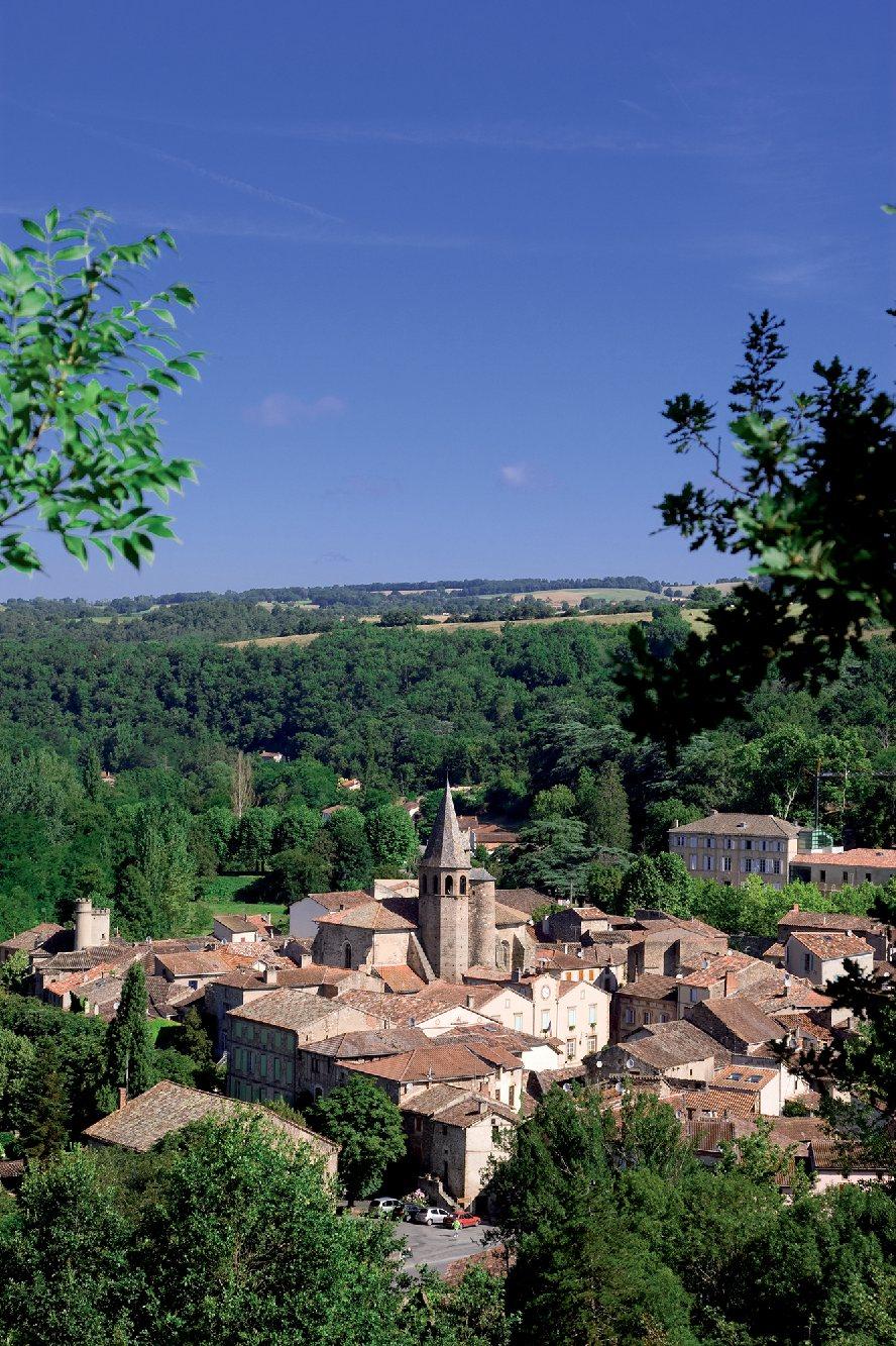Les plus beaux villages de France  - Page 4 Monest13