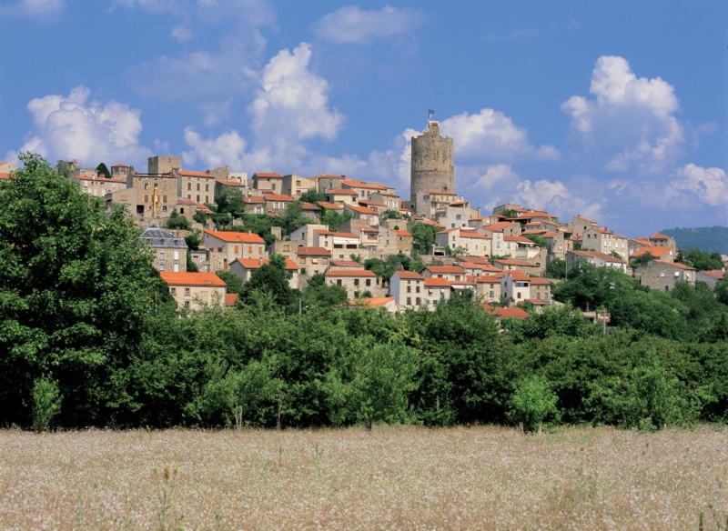 Les plus beaux villages de France  - Page 5 Montpe15