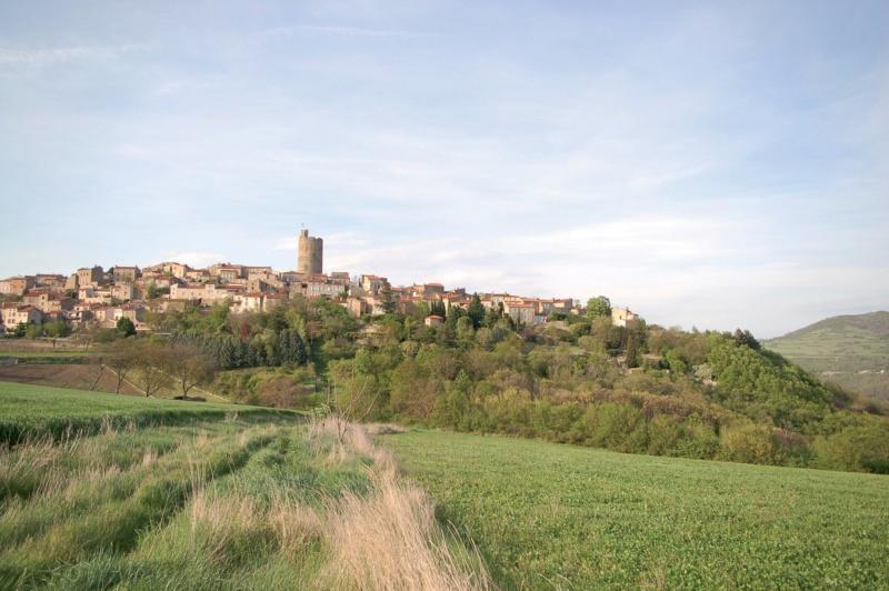 Les plus beaux villages de France  - Page 5 Montpe16