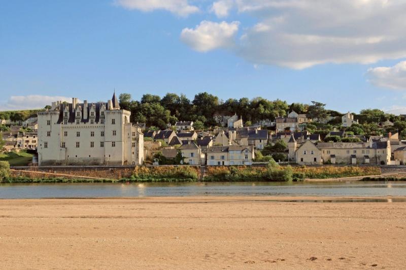 Les plus beaux villages de France  - Page 5 Montso11