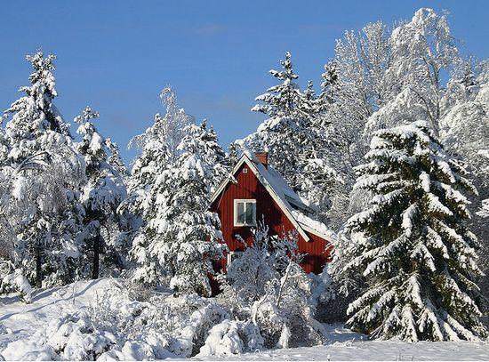 Belles images paysages hivernal  - Page 3 Paysag10