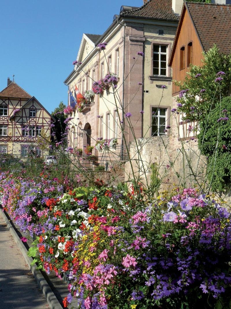 Les plus beaux villages de France  - Page 5 Riquew11