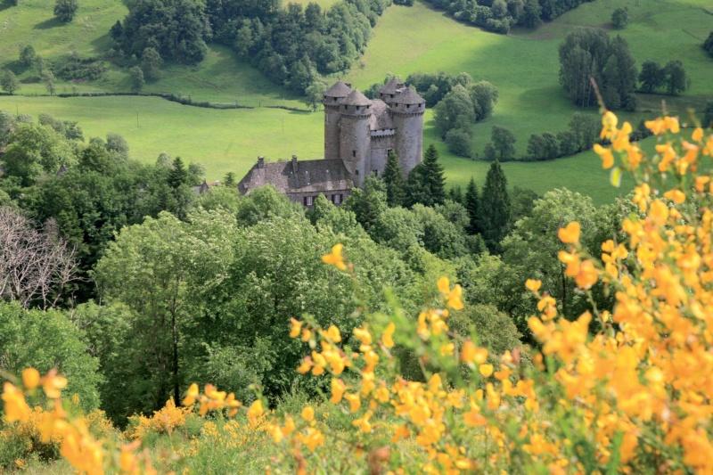 Les plus beaux villages de France  - Page 7 Tourne10