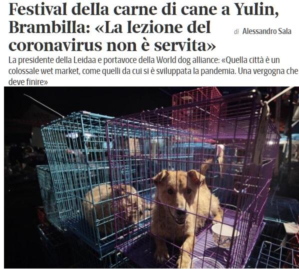 L'Amore per gli ANIMALI - Pagina 2 Festca10