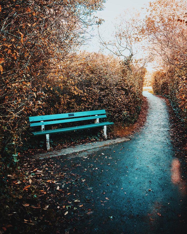 ... è , sarà autunno ...  Victor11