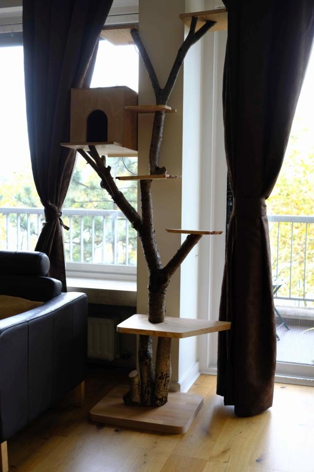 Pour les amoureux des chats....un arbre à chats! Ext20410