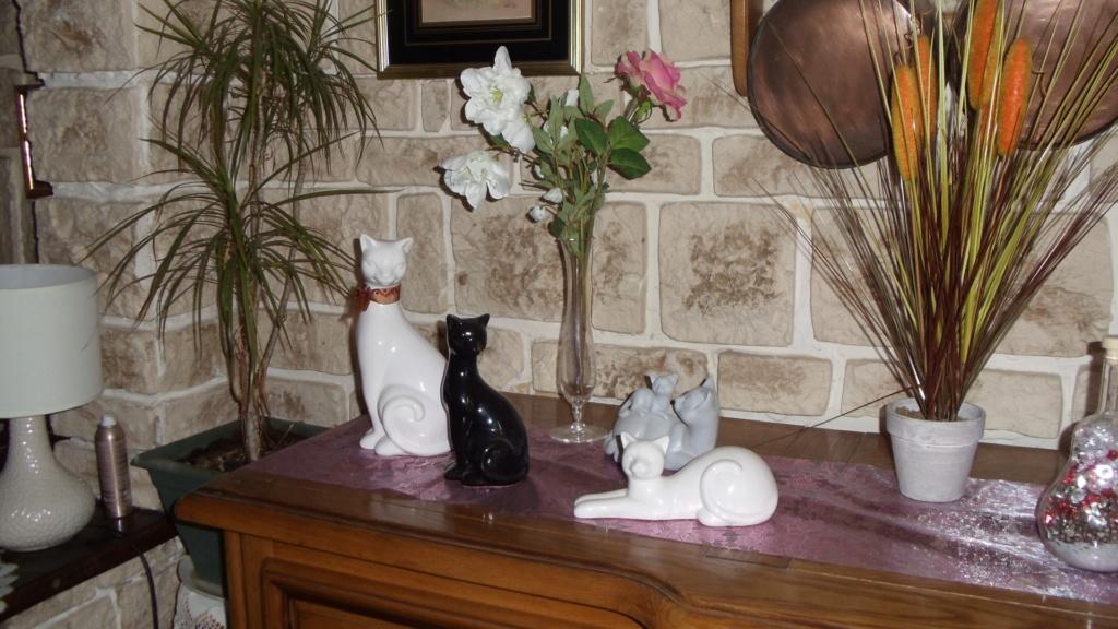 Collectionneur ou collectionneuse de chats. Dsc01010