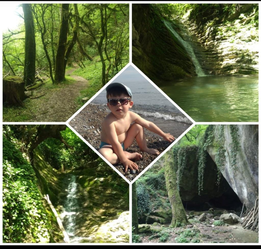 Куда съездить с детьми на природу посмотреть красоты? S9050710