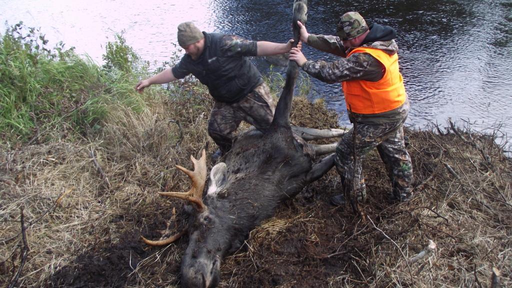 créer un forum : chasse-panache - Portail Dscf2414