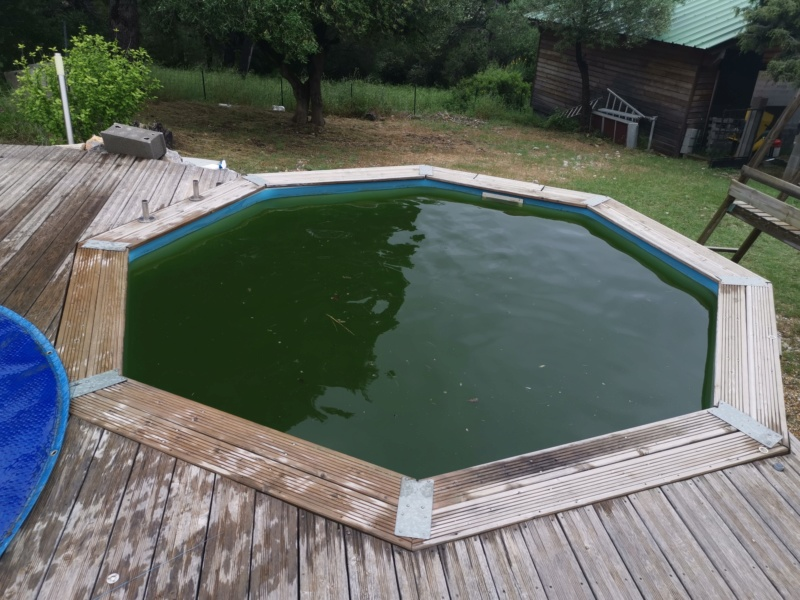 eau verte piscine Img_2432