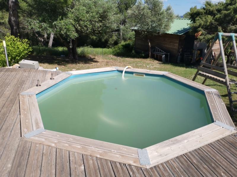 eau verte piscine Img_2433