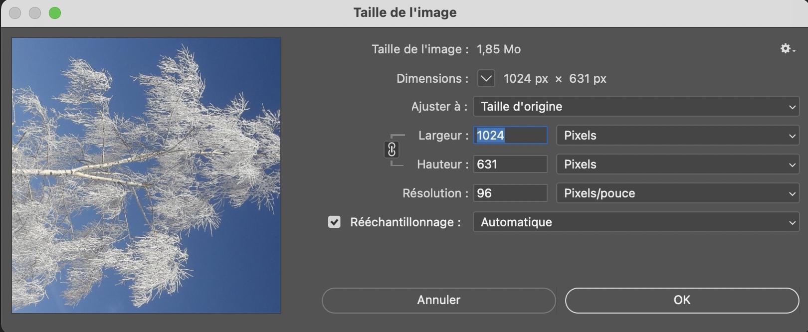 Orientation des images postées (portrait/paysage) Captur15