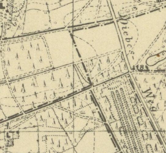 Athlone Bks history. Pb_19310