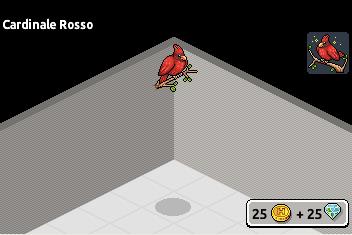 [ALL] Inserito Uccello Cardinale Rosso in catalogo su Habbo! Cardin10