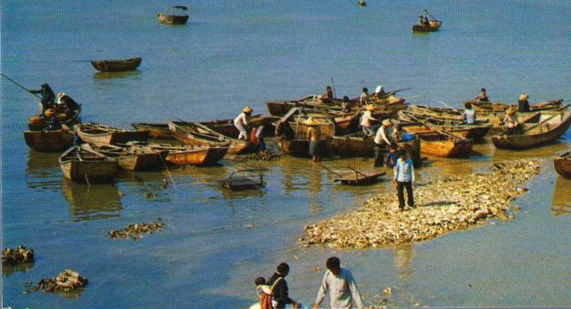 TEMATICA - Puertos pesqueros de España a través de las postales Pesca10
