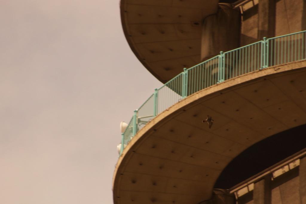 Rond om de toren - Pagina 5 00517