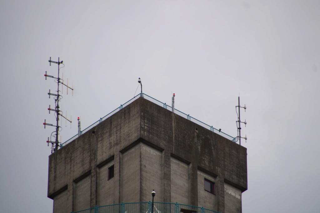 Rond om de toren - Pagina 11 00821