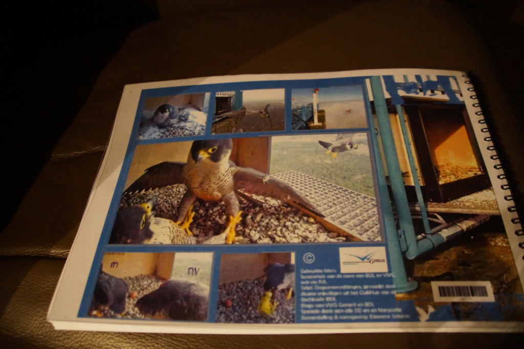 De Mortel campics en filmpjes deel 5 - Pagina 17 01013
