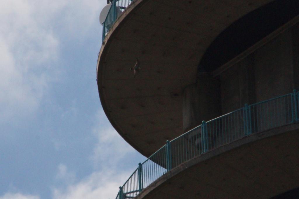 Rond om de toren 03210